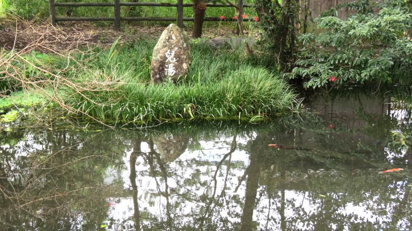 児湯の池3