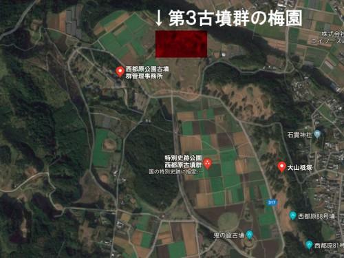 第3古墳群梅園地図