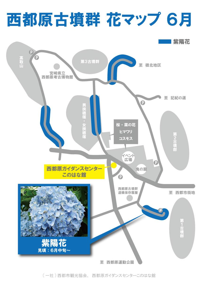 6月花地図