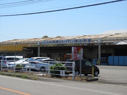 県道219号線を西都市街地から西米良方面へ向かいJA西都ピーマン集出荷場を越えてすぐ左折(案内看板あり)